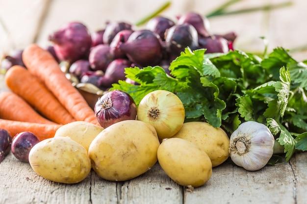 Czerwona cebula w misce brązu czosnek marchew ziemniaki seler zioła i kalarepa na stole ogrodowym. close-up świeżych zdrowych warzyw.