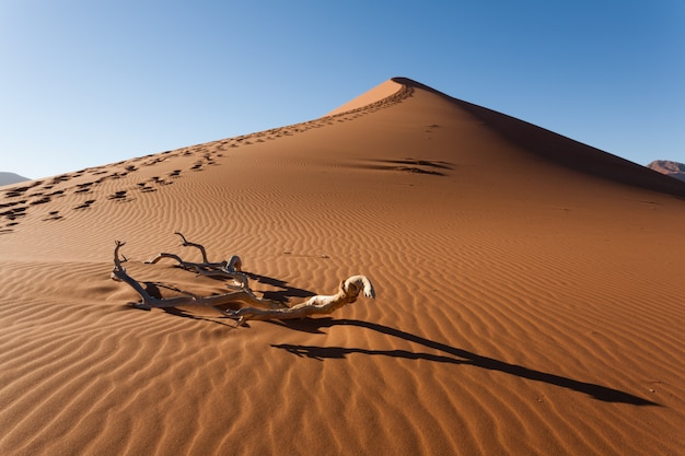 Czerwona diuna kalahari pustynia, sossusvlei, namibia