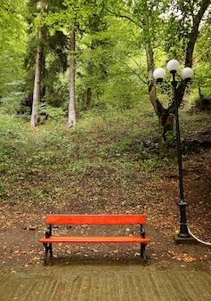 Czerwona drewniana pusta ławka w deszczowym parku