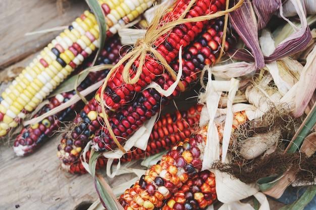 Czerwona i czarna kukurydza