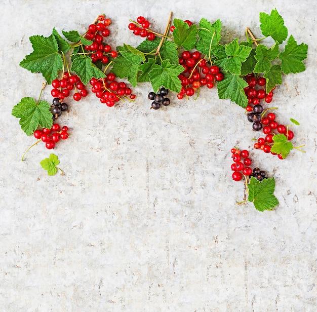 Czerwona i czarna porzeczka z liśćmi na jasnym tle. rama. widok z góry