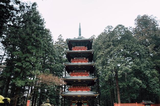 Czerwona pagoda w deszczu