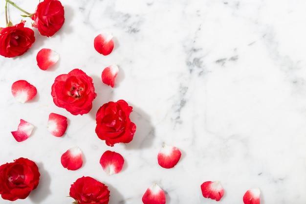 Czerwona róża i płatki na tle marmur. walentynki lub tło wesele.