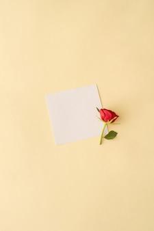 Czerwona róża na jasnym tle z miejsca na kopię. prosta koncepcja. minimalna kompozycja na płasko. wiosna 2021.