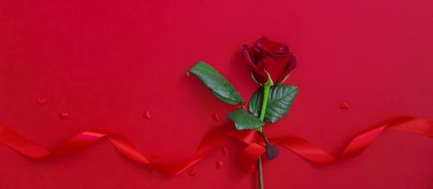Czerwona róża na szczęśliwe walentynki.