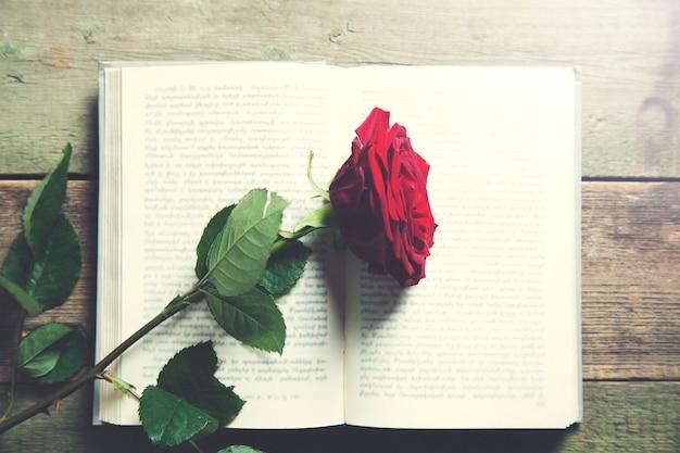 Czerwona róża na zabytkowej książce