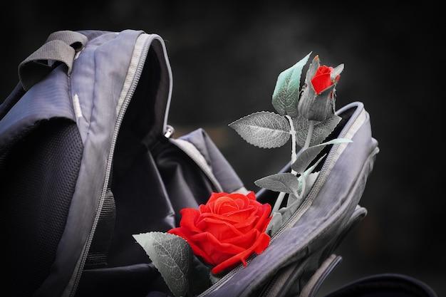 Czerwona róża w obrazie torby!