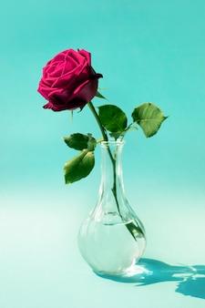Czerwona róża w pastelowym kolorze jako koncepcje miłości i romansu
