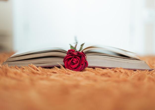 Czerwona róża wewnątrz otwartej książki