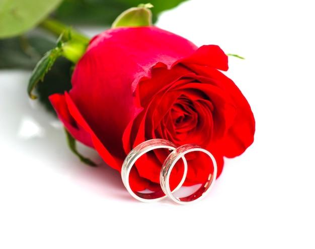 Czerwona róża ze srebrnymi pierścieniami na białym tle. pocztówka ślubna.