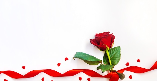 Czerwona róża ze wstążką na walentynki.