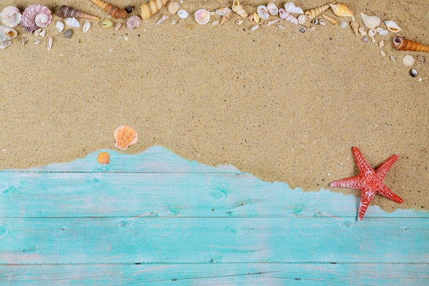 Czerwona rozgwiazda z seashells na dennym piasku na błękitnej drewnianej powierzchni