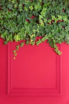 Czerwona ściana w połowie pokryta przez common ivy