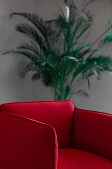 Czerwona skórzana kanapa w pobliżu zielonej rośliny