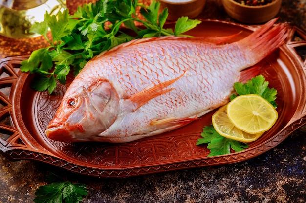 Czerwona surowa ryba tilapia z ziołami, oliwa cytrynowa.