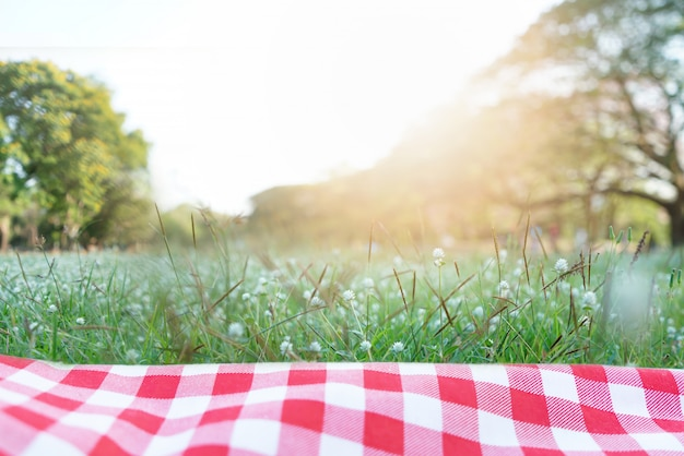 Czerwona w kratkę tablecloth tekstura na z zieloną trawą przy ogródem