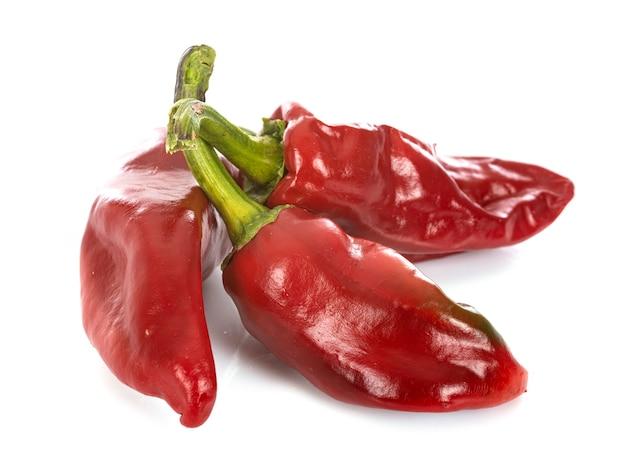 Czerwone chili przed białym tłem