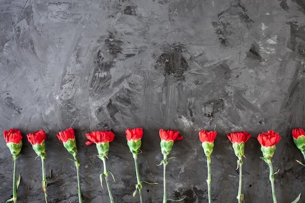 Czerwone goździki kwiatowy obramowanie lub rama z czerwonymi goździkami na szarym tle
