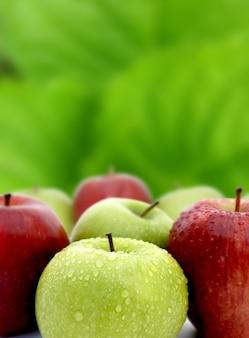 Czerwone i zielone jabłka z kropli wody na zielonym tle