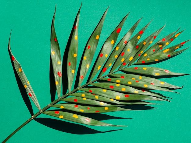 Czerwone i żółte kropki farby na liściach paproci