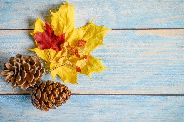 Czerwone i żółte suche jesienne liście klonu, gałązki jesienią i szyszki cedrowe na niebieskim drewnianym stole lub tle. materiały jesienne dla kreatywności i rzemiosła dzieci. miejsce na tekst