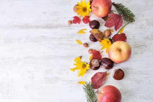 Czerwone jabłka brązowe, kasztany i żółte kwiaty z liśćmi na białym, widok z góry