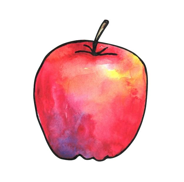 Czerwone jabłko kolorowe. ręcznie rysowane ilustracji akwarela i tusz. odosobniony.