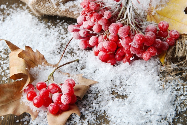 Czerwone jagody kaliny i śnieg na parcianej serwetce, na drewnianym tle