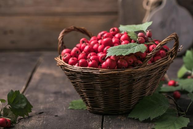 Czerwone jagody świeżego głogu w koszu stojącym na drewnianym stole