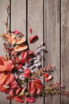 Czerwone jesienne liście na starym drewnianym tle