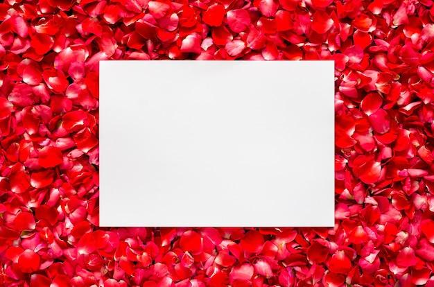 Czerwone płatki róż kwiat tło z puste miejsce na tekst. koncepcja walentynki i miłość.