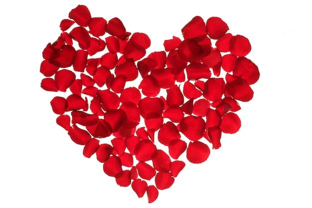 Czerwone płatki serca, valentines kwiaty metafora