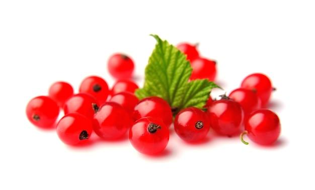 Czerwone porzeczki z bliska na białym tle