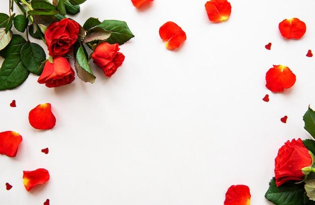 Czerwone róże i płatki na białym tle