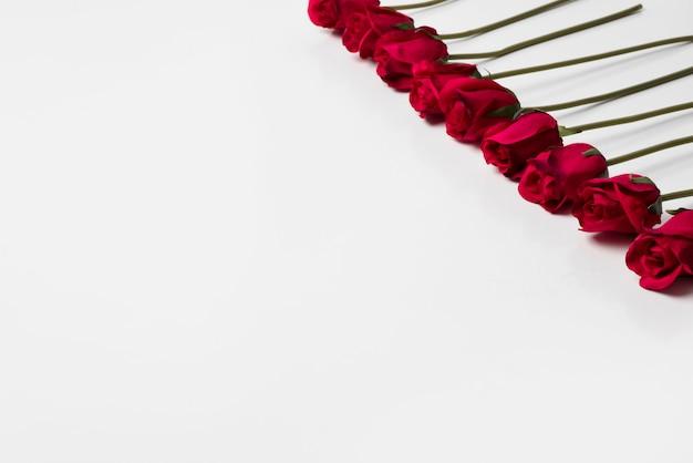 Czerwone róże na stole światła