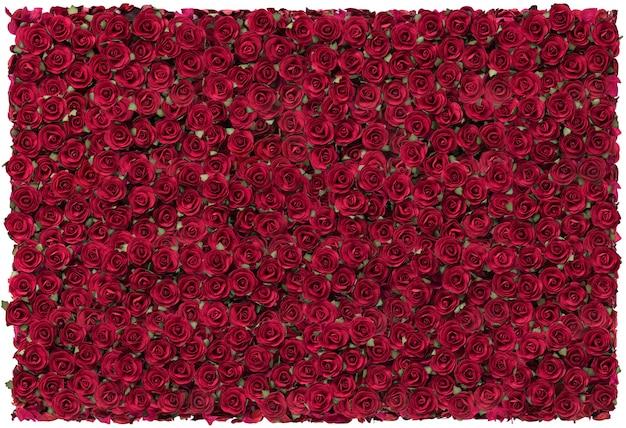 Czerwone róże na walentynki.