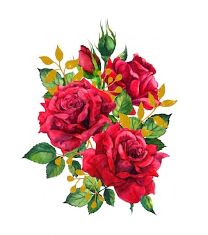 Czerwone róże ze złotymi liśćmi. ilustracja akwarela