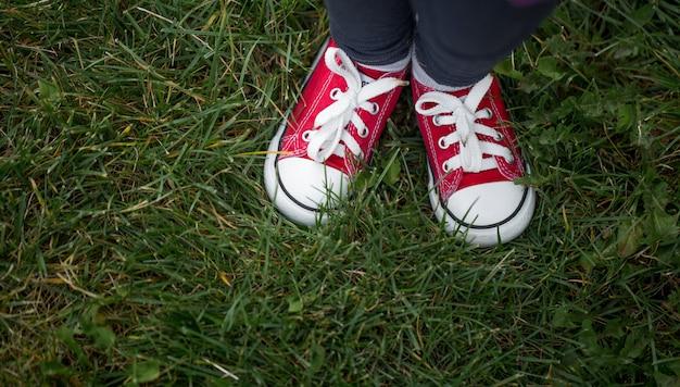 Czerwone trampki na zielonej trawie, widok z góry