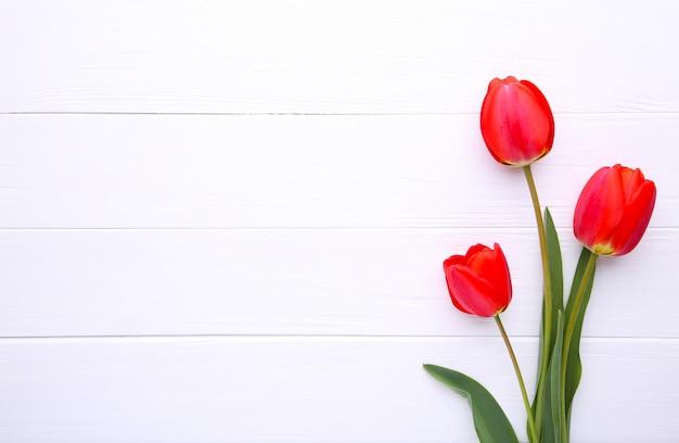 Czerwone tulipany na białym tle drewniane