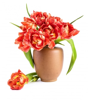 Czerwone tulipany w glinianym wazonie