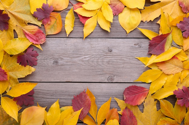 Czerwoni i pomarańczowi jesień liście na szarym stole