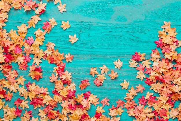Czerwoni i żółci liście na barwionym tle
