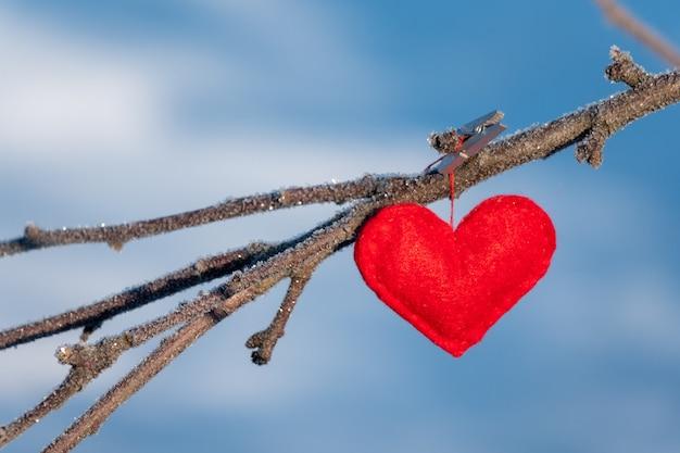 Czerwoni serca na śnieżnej gałąź w zimie.