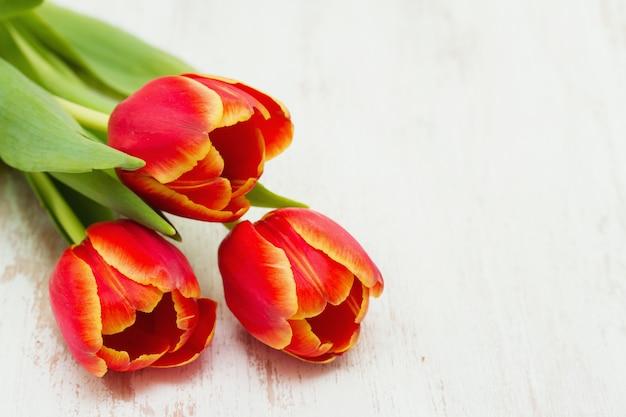 Czerwoni tulipany na drewnianej powierzchni