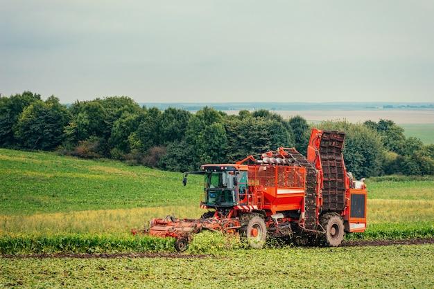 Czerwony ciągnik na zielonym polu