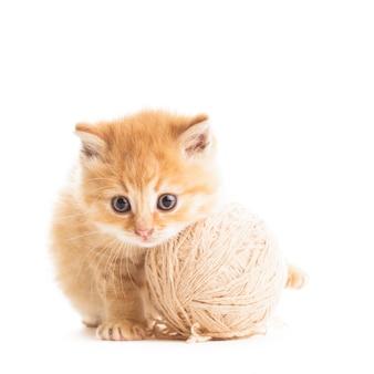 Czerwony figlarny kotek z beżową kłębkiem przędzy na białym tle