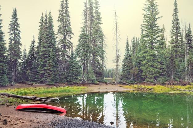 Czerwony kajak na zielonym jeziorze w lesie