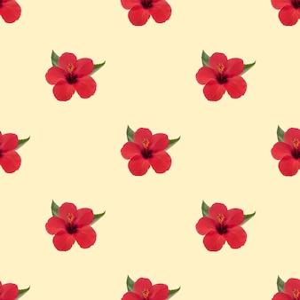 Czerwony kwiat hibiskusa na żółtym tle