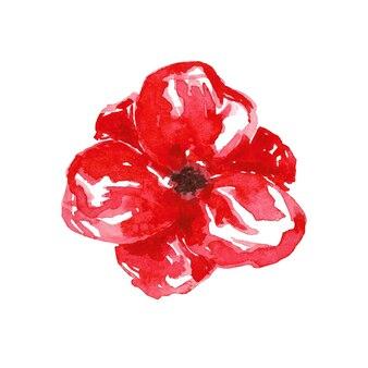 Czerwony mak clipart na białym tle. akwarela ręcznie rysowane ilustracja kwiat. jasny element projektu botanicznego do dekoracji, ślubu, karty, zaproszenia, prezentu, imprezy, kwiaciarni.