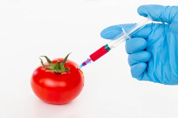 Czerwony pomidor i strzykawka z azotanami na białym tle. pestycydy i azotany są wstrzykiwane przez pracownika naukowego do czerwonego pomidora za pomocą strzykawki z koncepcją składnika żywności gmo